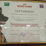 Рудой_серт_3