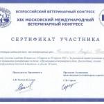Nikolaenko9
