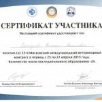 Sorokoumova21