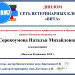 Sorokoumova_Dip