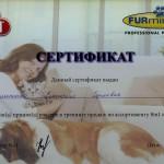Семененко Екатерина Сергеевна