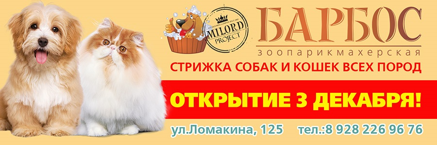 Barbos_Taganrog_900_300